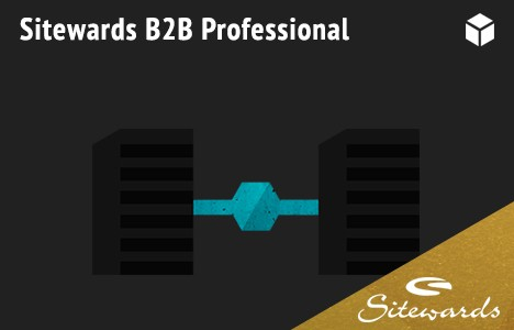 sitewards-b2b-professional